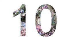 10 Jahre…